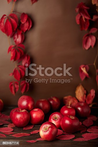 1020586746 istock photo Autumn monochrome still-life in red and burgundy shades. 863467114