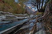 Autumn mood at the Gerbirgs river (Verzasca, Lavertezzo)