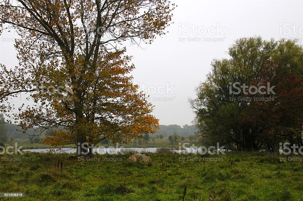 Autunno al lago atmosfera foto stock royalty-free