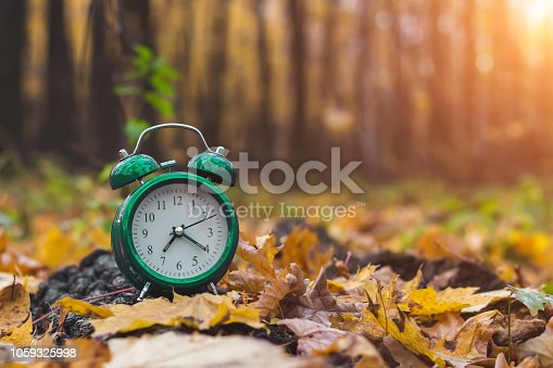 istock Autumn mood. Good morning. Nature wakes up. Change season. Back to school. 1059325998