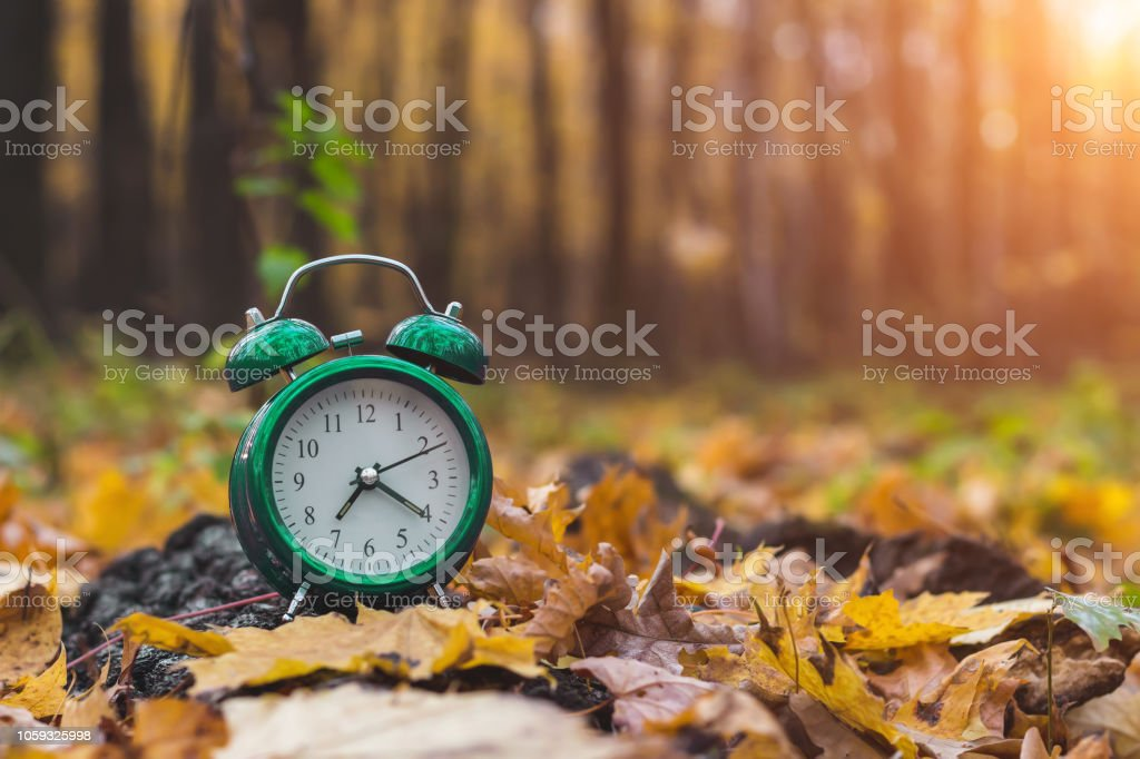 Autumn mood. Good morning. Nature wakes up. Change season. Back to school. stock photo