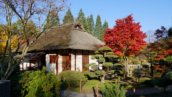Autumn mood. The Japanese Garden in the beautiful park Planten un Blomen, in the middle of the city.Hamburg Germany, Europe