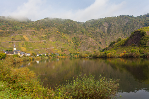 Autumn Moselle foggy Landscape and village Bremm Germany