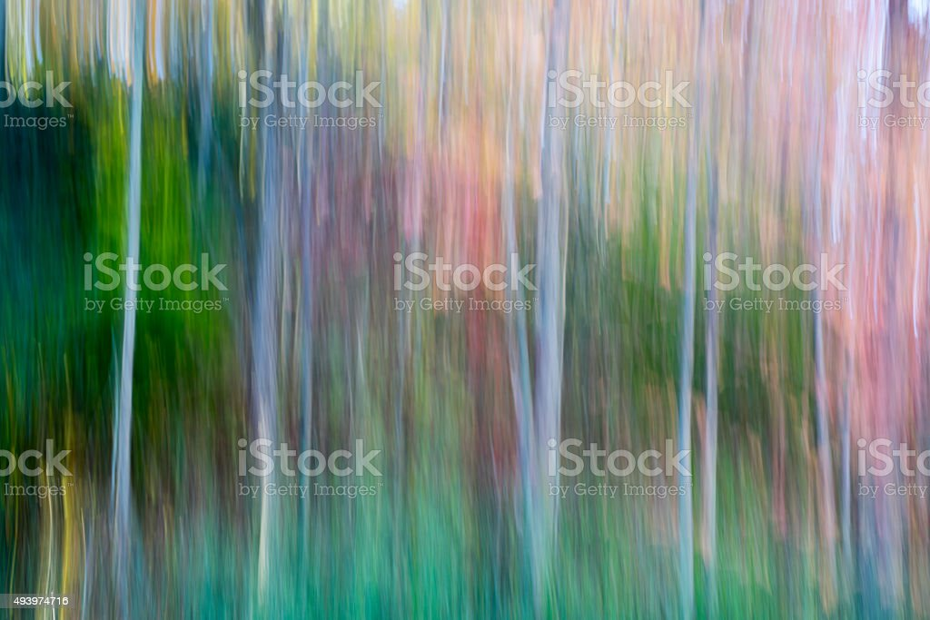 Autumn Motion Blur stock photo
