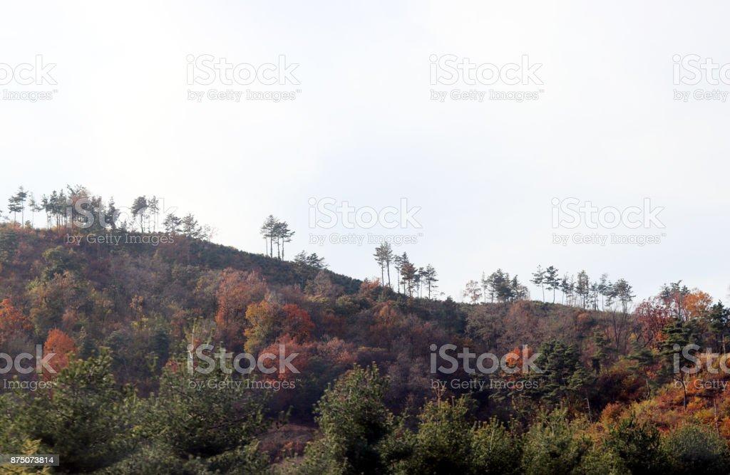 Autumn mountain and sky stock photo