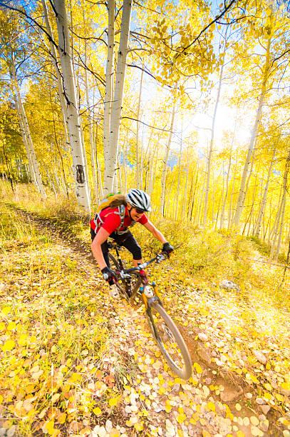 autumn mountain biking woman stock photo