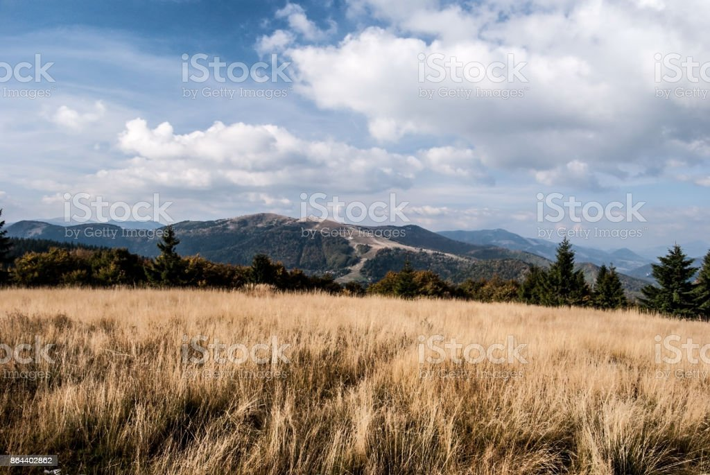 autumn mountain meadow with hills on the background stock photo