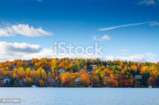 Colorful trees in mountain with green, yeloow, orange and red leaves with lake in foreground.