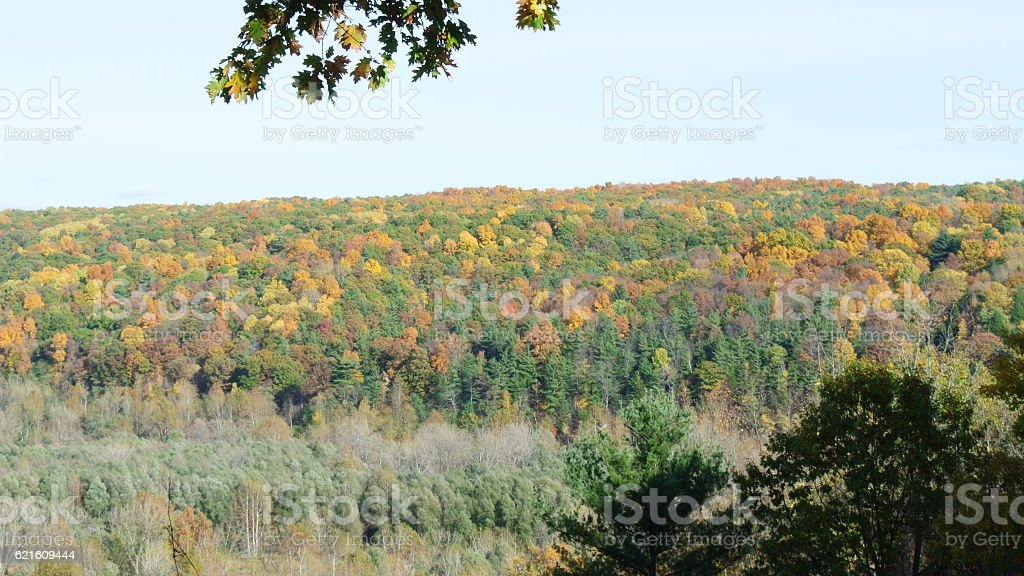 Autumn Mountainside stock photo