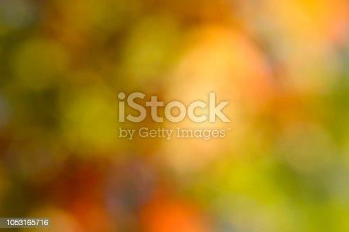 autumn multicolored nature blurred defocused background