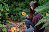 Young woman stops in wet forest trail to examine Chanterelle mushroom.  Bamfield, Vancouver Island, British Columbia, Canada.