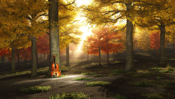 Autumn music Violin leans to tree in autumn forest. string instrument stock pictures, royalty-free photos & images