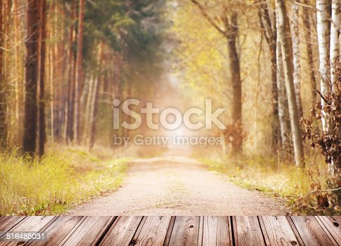 istock Autumn nature background with Wooden terrace and forest. 516485031