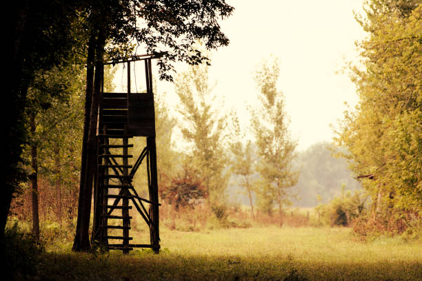 Autumn nature with a hunting tower on a field Autumn nature with a hunting tower on a field hunting blind stock pictures, royalty-free photos & images