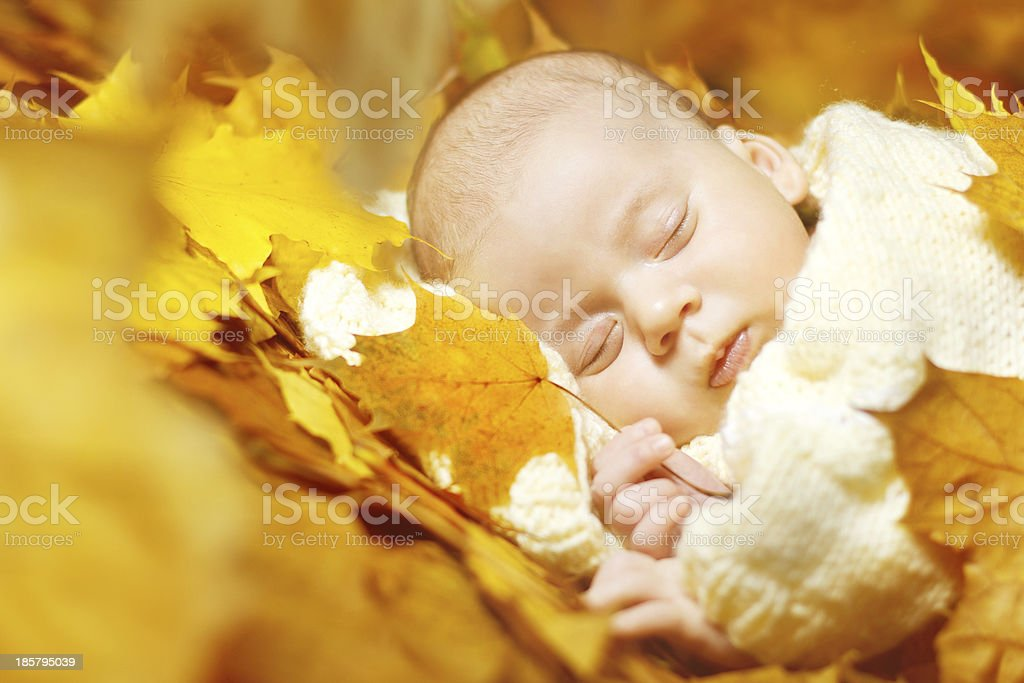 Autumn newborn baby sleeping in yellow leaves royalty-free stock photo