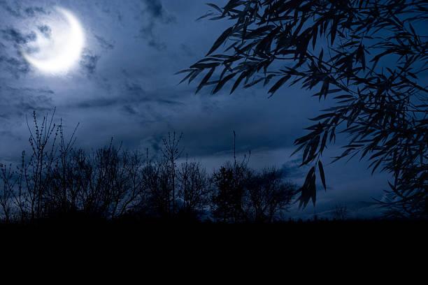 autumn night stock photo