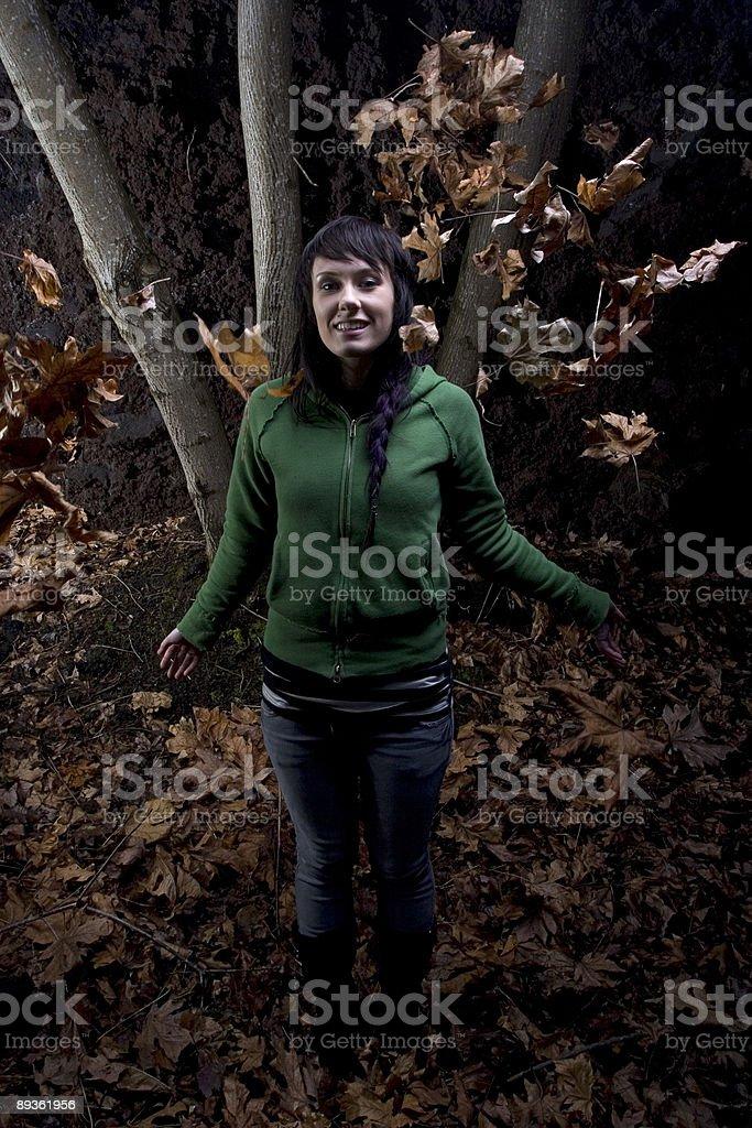 Autumn Nights royaltyfri bildbanksbilder