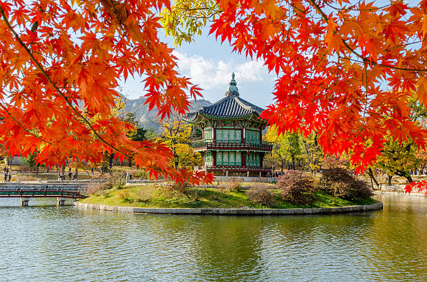 Otoño de Gyeongbokgung Palace en seúl, Corea - foto de stock
