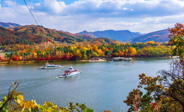 Otoño de la isla de Nami en Seúl, Corea del sur - foto de stock