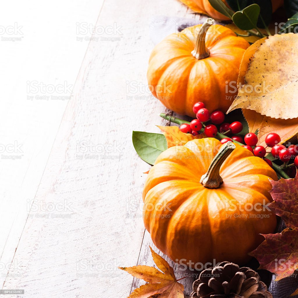Autumn old wood background with pumpkin stock photo