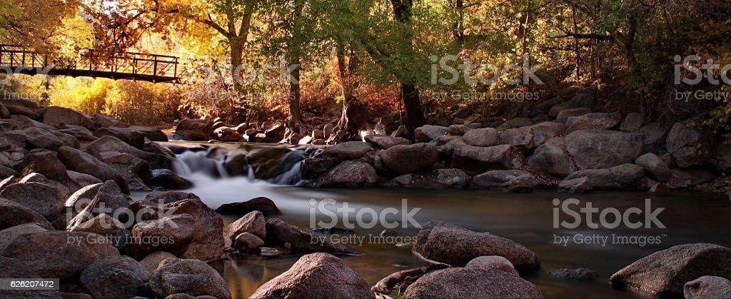 Autumn on the creek. stock photo