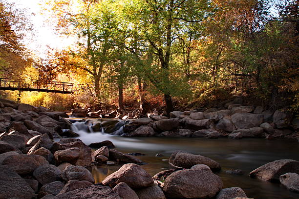 Autumn on the creek. stock photo