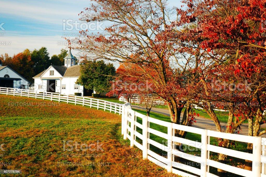 Autumn on the Horse Farm stock photo
