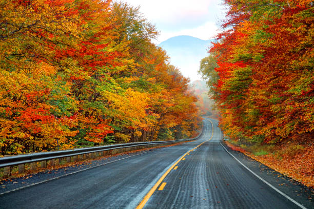 Autumn on the Kancamagus Highway in New Hampshire The Kancamagus Highway in Northern NH is a 34 mile scenic highway that stretches from Lincoln, NH to Conway, NH white mountain national forest stock pictures, royalty-free photos & images
