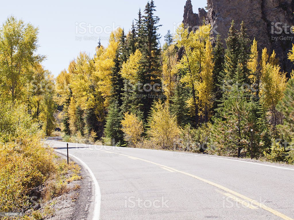 Autumn on the road royalty-free stock photo
