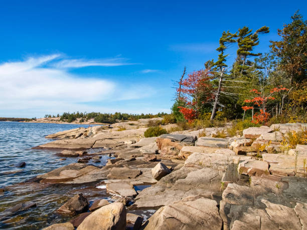autumn on the shore of lake huron, a beautiful autumn landscape - nord foto e immagini stock