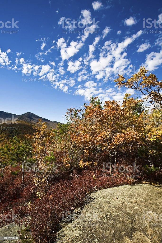 Autumn on Top of Owl's Head Mountain stock photo