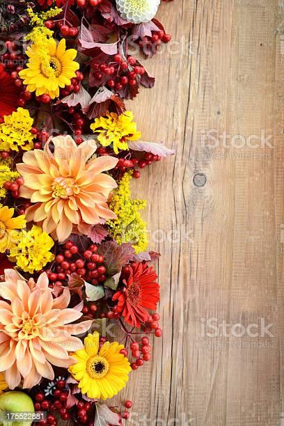 Autumn ornament picture id175522881?b=1&k=6&m=175522881&s=612x612&h=u11ddh6cj81mv abs5efxlw5ibckcs0f581hxa6guce=