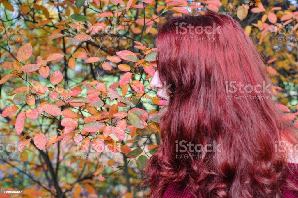 Autumn outdoor girl redhead with trailing virginia creeper stock photo
