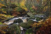 Millstone in autumn Padley Gorge Derbyshire