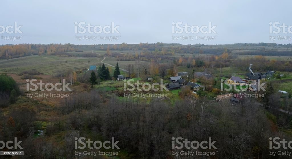 Autumn panorama of the beautiful forest. stock photo