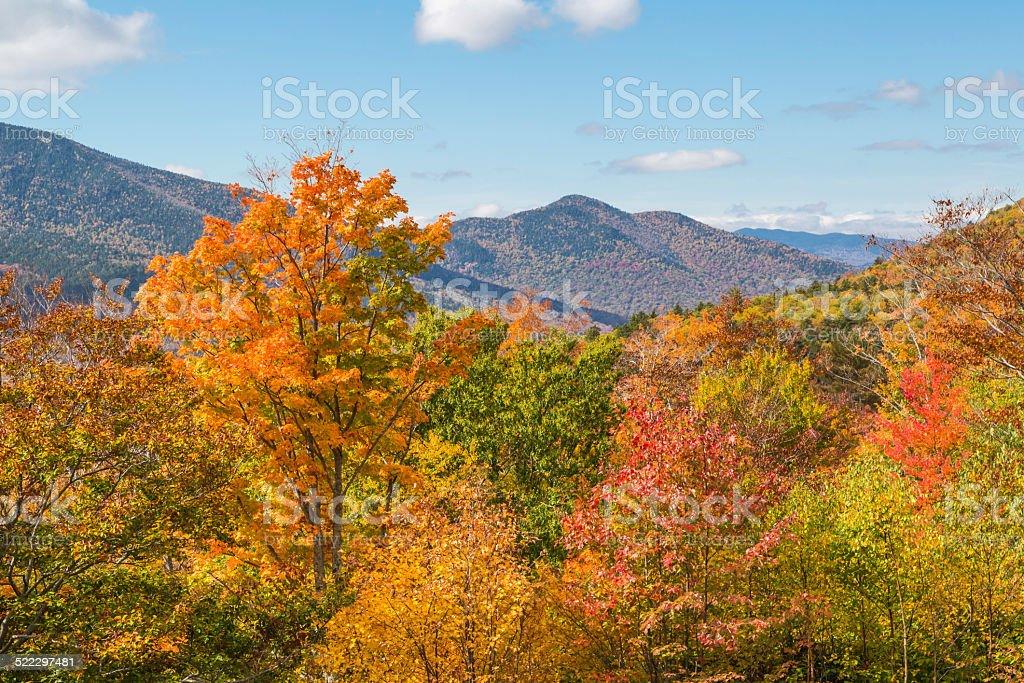 Autumn Paradise stock photo