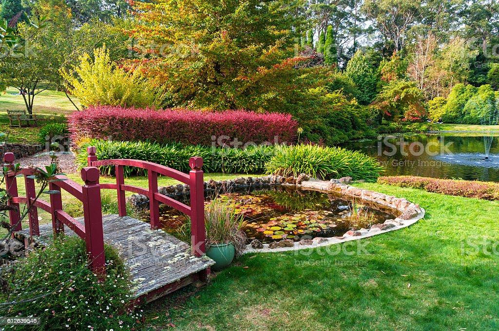Autumn park. Bisley garden stock photo