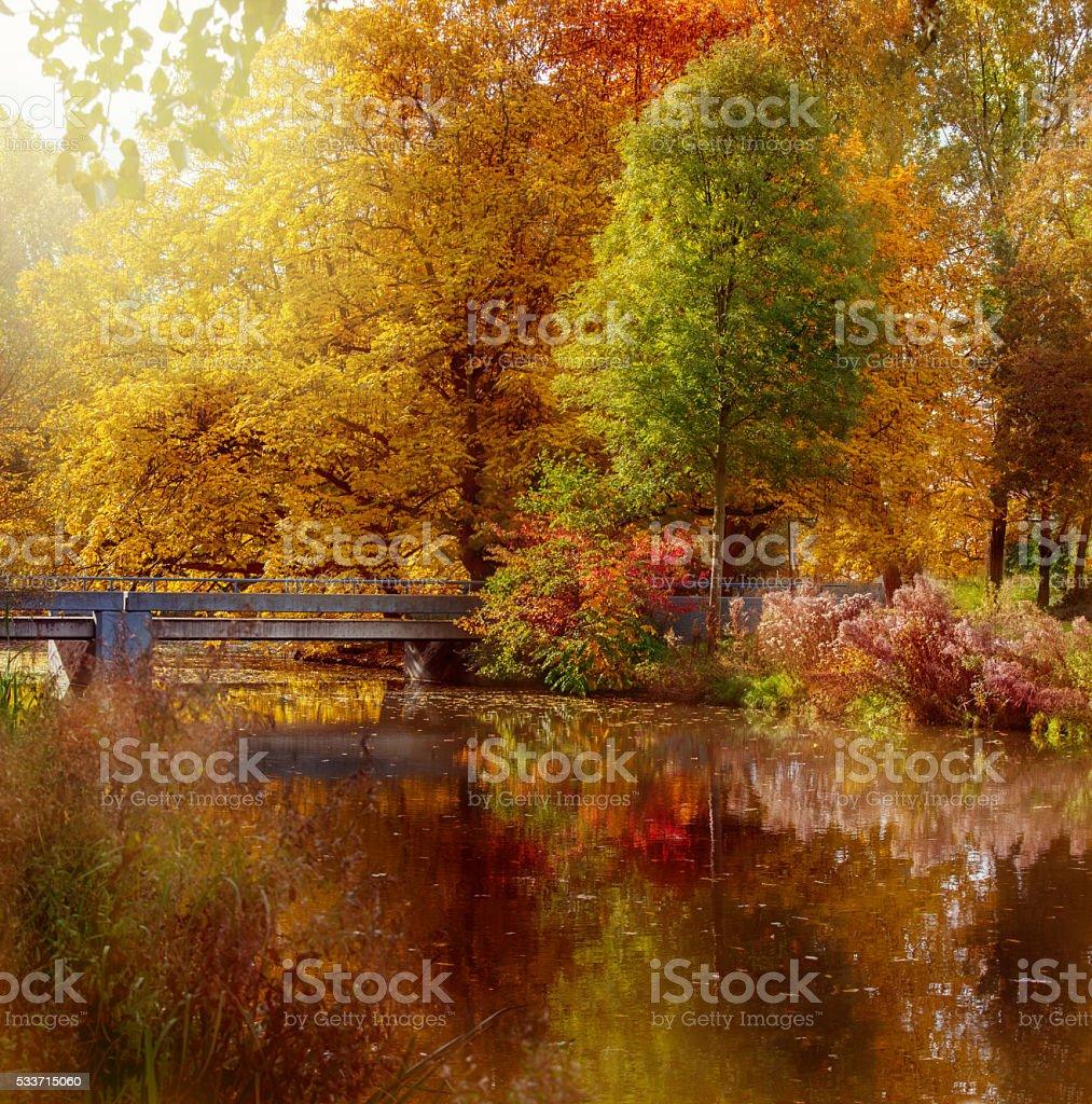 Autumn park in Amsterdam stock photo