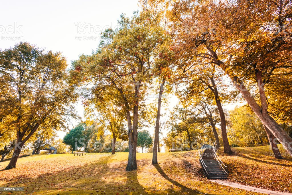 autumn park in usa stock photo