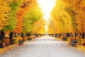 City park in autumn colors.