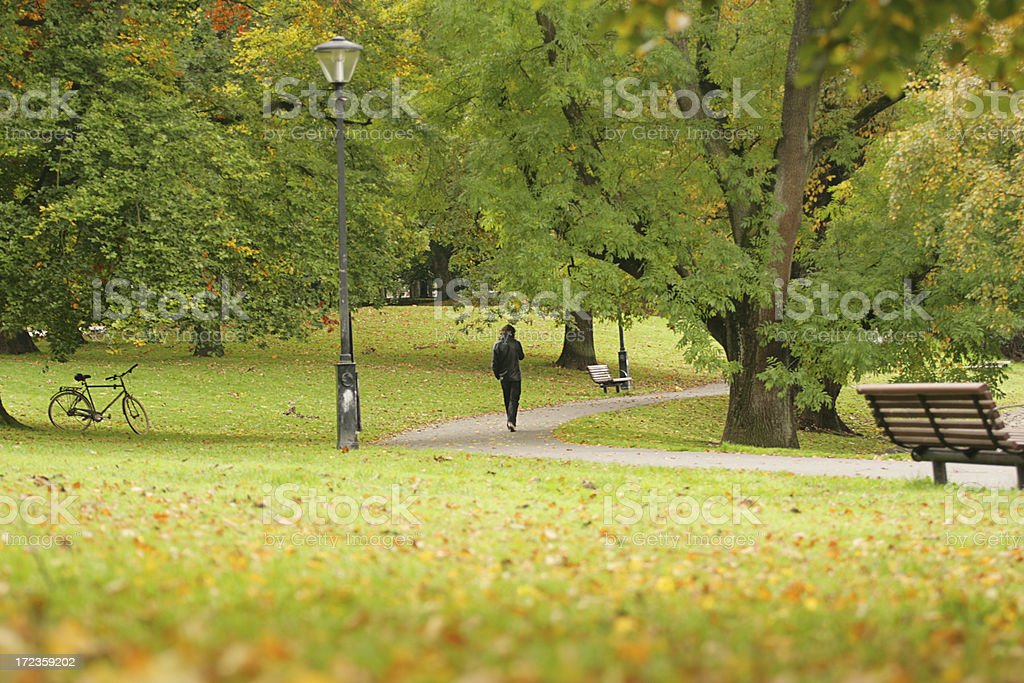 Autumn Park royalty-free stock photo