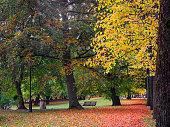 Autumn park with bench in Gothenburg, Sweden