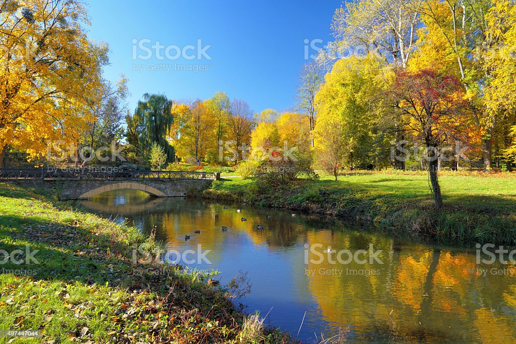 Autumn park with colorful trees reflected in river stock photo