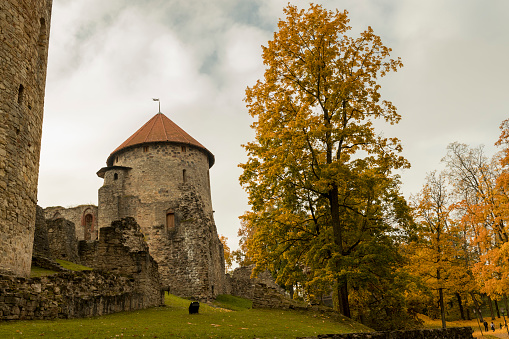 Autumn park with old castle ruins in Cesis town