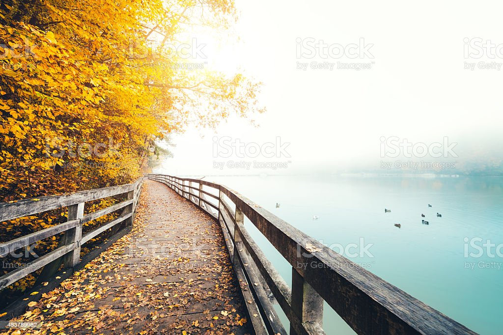 Footpath with a wooden fence by the misty lake. Early morning view...