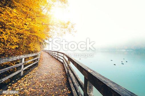 istock Autumn Path Along The Lake 483789982