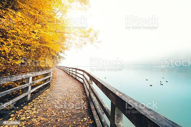 Photo of Autumn Path Along The Lake