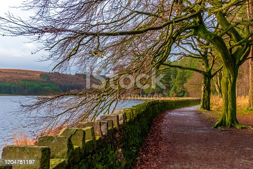 Stone wall and treelined path around a lake.