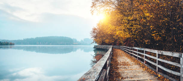 Autumn Path By The Lake - foto stock