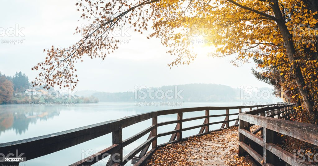 Autumn Path By The Lake stock photo